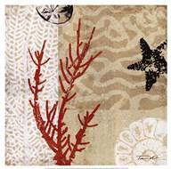 Coral Impressions I Art