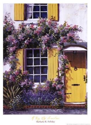 Ray Of Sunshine Fine Art Print By Barbara Felisky At