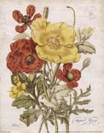 August Poppy Art