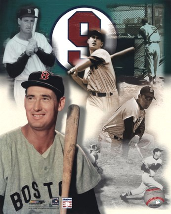 Framed Ted Williams - Legends Of The Game Composite Print