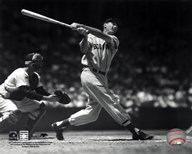 Ted Williams - Batting (sepia) Art