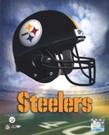 Pittsburgh Steelers Helmet Logo  Fine Art Print