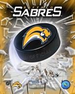 '06 / '07 - Sabres Team Logo  Fine Art Print