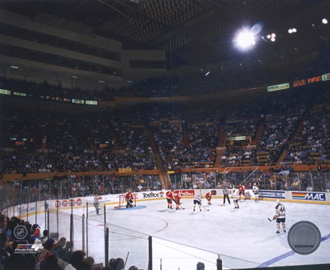 Buffalo Memorial Auditorium Sabres Fine Art Print By