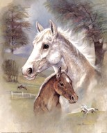 Dapple Mare And Fowl  Fine Art Print