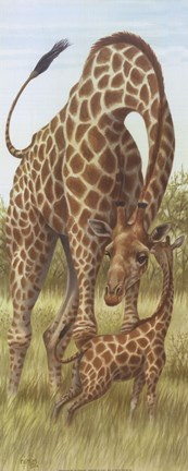 Framed Mama Giraffe With Baby Print
