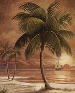 Island Palm I  Fine Art Print