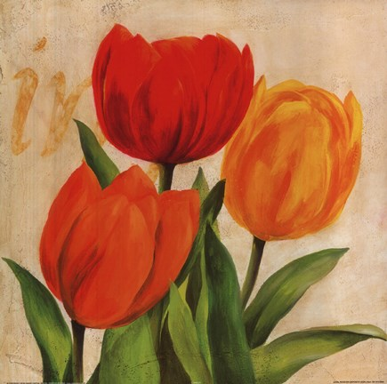 Framed Red, Orange Yellow Tulips Print