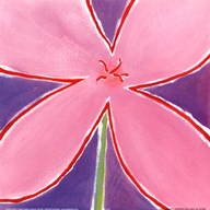 Pink Flower With Purple Background  Fine Art Print