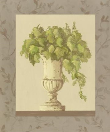 Framed Plant In Vase Print