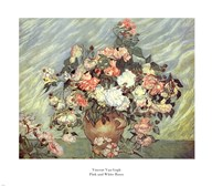 Pink and White Roses  Fine Art Print
