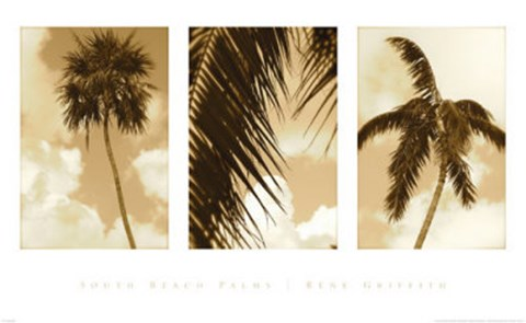 Framed South Beach Palms Print