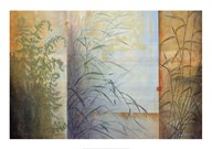 Ferns & Grasses  Fine Art Print