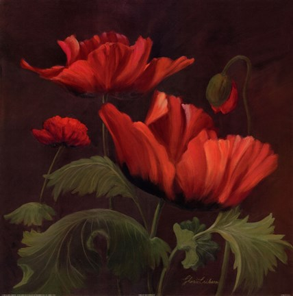 Framed Vibrant Red Poppies II Print