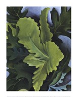 Green Oak Leaves Art