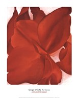 Red Cannas Art
