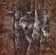 Woodland Spirit  Fine Art Print