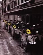 Sunflower Cafe  Fine Art Print