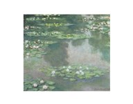 Water Lilies (I), 1905 Art