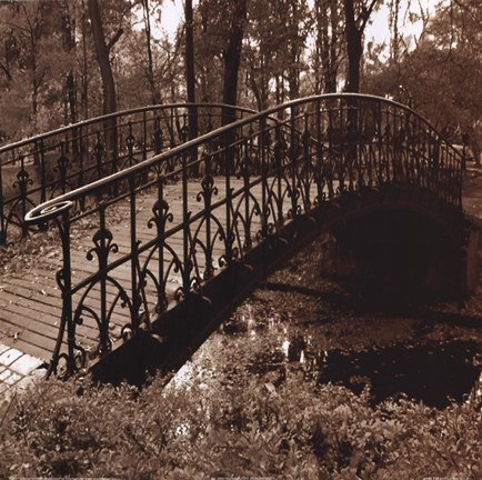 Framed Wrought Iron Bridge II Print