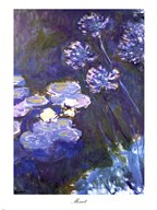 Water Lilies and Agapanthus, 1914-1917  Fine Art Print