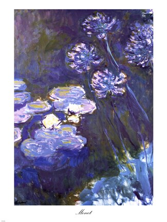 Framed Water Lilies and Agapanthus, 1914-1917 Print