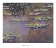 Water Lilies, 1903  Fine Art Print