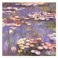 Water Lilies, c.1916  Fine Art Print