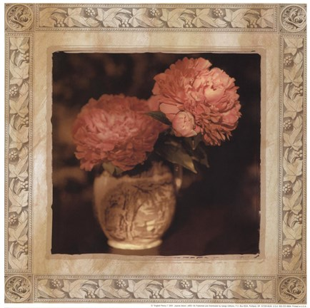 Framed English Peony I Print