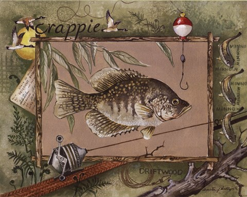 Framed Crappie Print