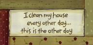 I Clean My House