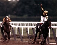 Seattle Slew 1977 Belmont Stakes #419 Art