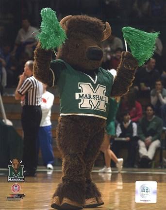 Marco Marshall University Thundering Herd Mascot Fine