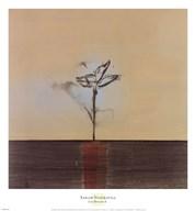 Zen Blossom II  Fine Art Print