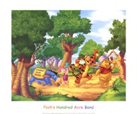 Pooh's Hundred Acre Band