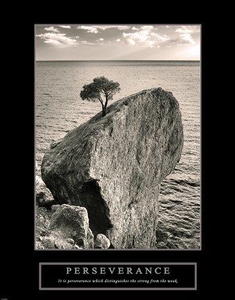 Framed Perseverance - Lone Pinyon Tree Print