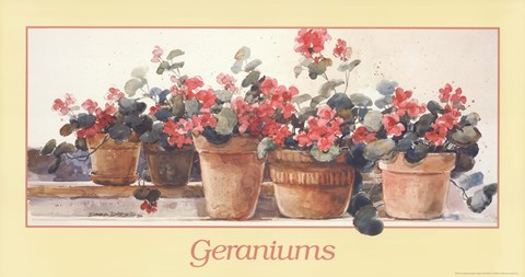 Framed Geraniums Print