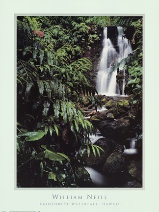 Framed Rainforest Waterfall, Hawaii Print