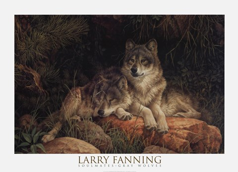 Soulmates Detail Fine Art Print By Larry Fanning At