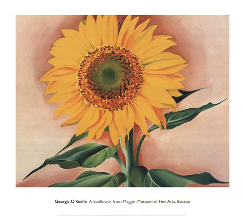 Framed Sunflower from Maggie, 1937 Print