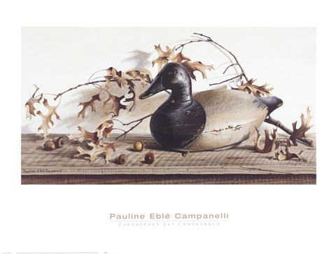 Framed Chesapeake Bay Canvasback Print