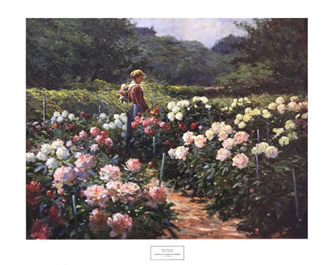 Framed Woman in a Garden of Peonies Print