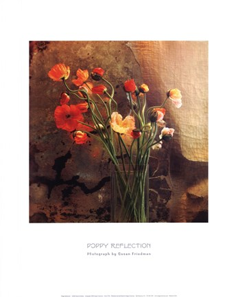 Framed Poppy Reflection Print