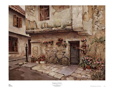 Passageway In Provence Fine Art Print By Roger Duvall At