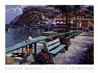Catalina Promenade  Fine Art Print