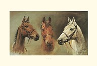 We Three Kings  Fine Art Print