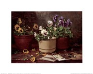 Pansies in Terra Cotta  Fine Art Print