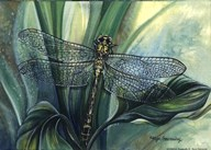 Dragonfly II Art