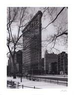 Flat Iron Building Art