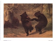 Dancing Bears